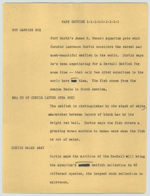 Primary view of object titled '[News Script: Rare catfish]'.