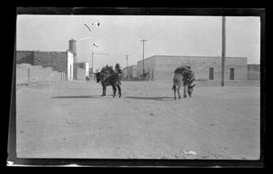 Primary view of object titled '[Two pack mules and a man]'.