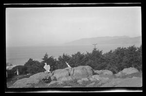 Primary view of object titled '[A small statue overlooks a large body of water]'.