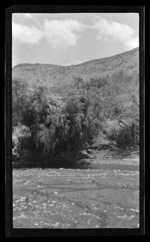 Primary view of object titled '[Photo of a small stream surrounded by trees]'.