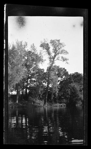 Primary view of object titled '[Landscape of a river in a forest]'.