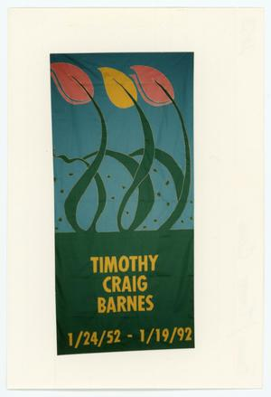 Primary view of object titled '[AIDS Memorial Quilt Panel for Timothy Craig Barnes]'.