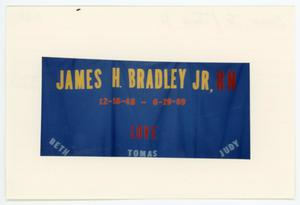 Primary view of object titled '[AIDS Memorial Quilt Panel for James H. Bradley Jr.]'.
