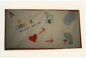 Primary view of object titled '[AIDS Memorial Quilt Panel for Tim Christie]'.