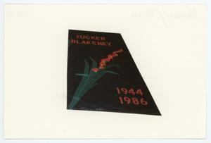 Primary view of object titled '[AIDS Memorial Quilt Panel for Tucker Blakeney]'.