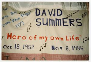 Primary view of object titled '[AIDS Memorial Quilt Panel for David Summers]'.