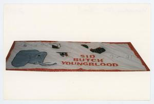 "Primary view of object titled '[AIDS Memorial Quilt Panel for Sid ""Butch"" Youngblood]'."