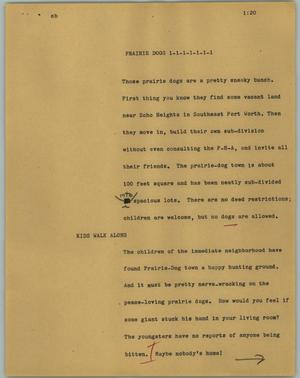 Primary view of object titled '[News Script: Prairie dogs]'.