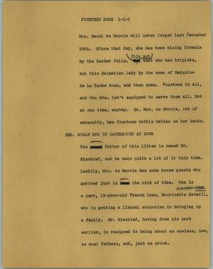 Primary view of object titled '[News Script: Fourteen dogs]'.