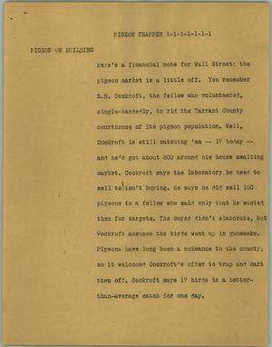 Primary view of object titled '[News Script: Pigeon trapper]'.