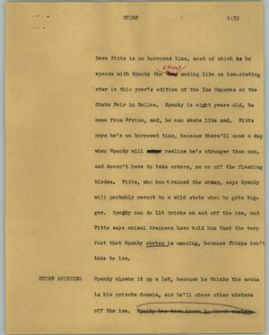 Primary view of object titled '[News Script: Chimp]'.