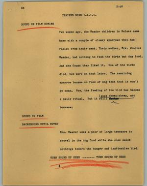 Primary view of object titled '[News Script: Trained bird]'.