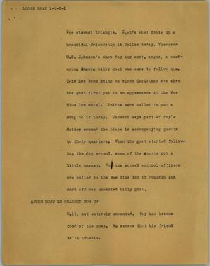 Primary view of object titled '[News Script: Loose goat]'.