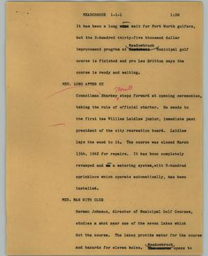 Primary view of object titled '[News Script: Meadowbrook]'.