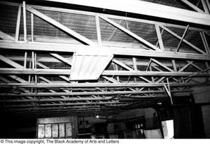 Primary view of object titled '[Ceiling of Lamar St. Building]'.