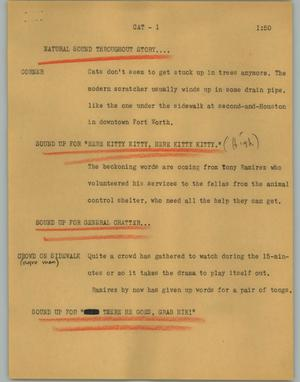 Primary view of object titled '[News Script: Cat]'.