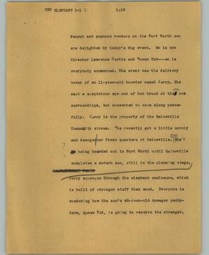 Primary view of object titled '[News Script: New elephant]'.