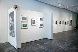 Primary view of object titled '[Grouping of Photographs on Exhibit Wall]'.