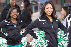 Primary view of object titled '[UNT Dancers at Homecoming Game]'.