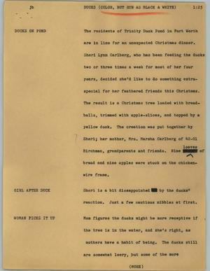 Primary view of object titled '[News Script: Ducks]'.