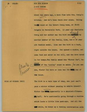 Primary view of object titled '[News Script: Bye bye birdie]'.