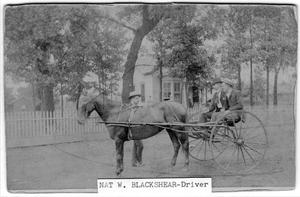 Primary view of object titled '[Nathanial W. Blackshear at reins of a wagon]'.