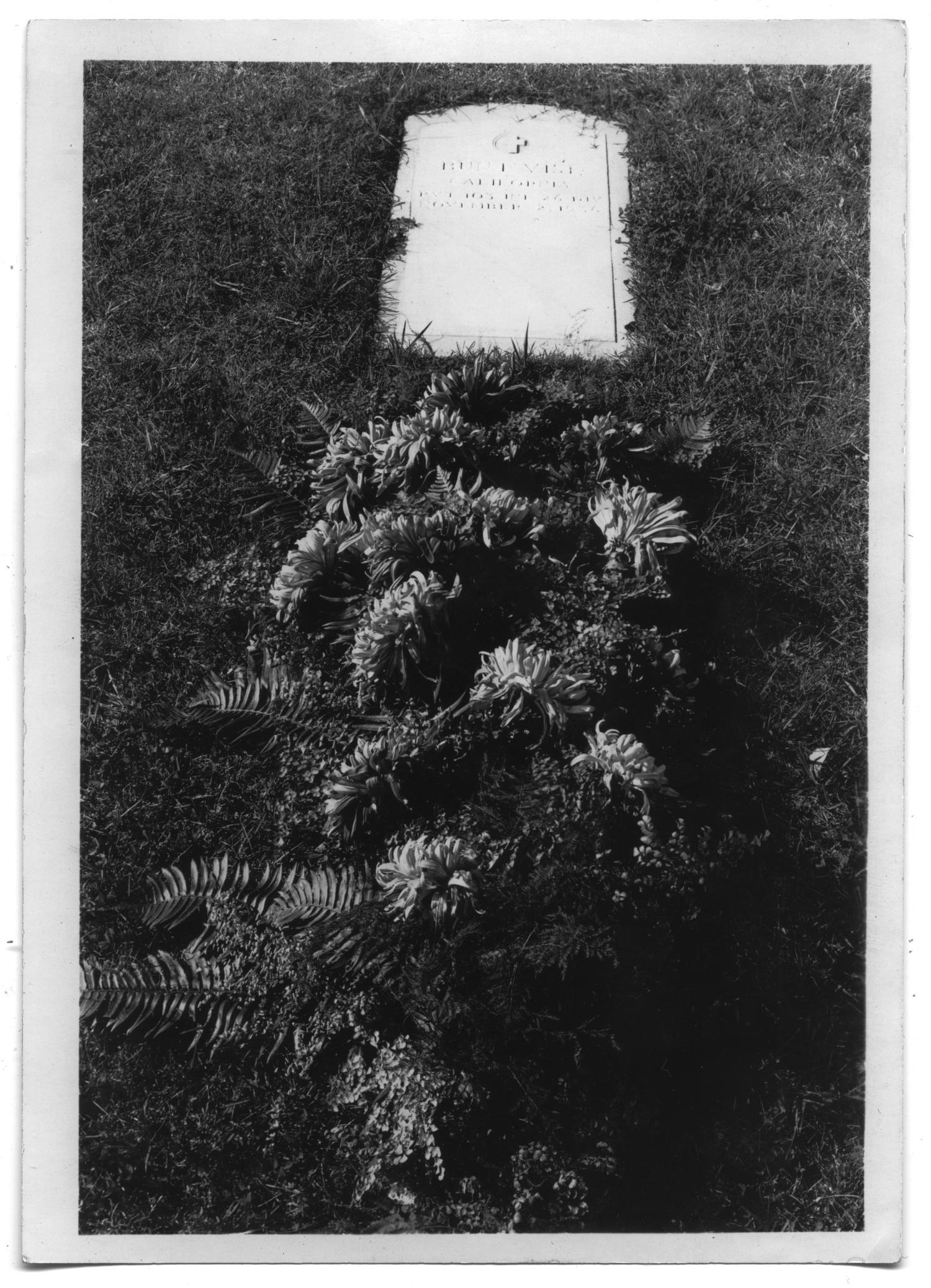 Headstone of Bunt Vise's grave                                                                                                      [Sequence #]: 1 of 1