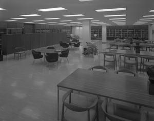 [Academic Study Area]