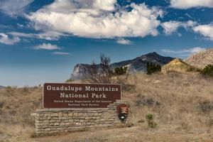 Primary view of object titled 'Guadalupe Mountains National Park Entrance Sign'.