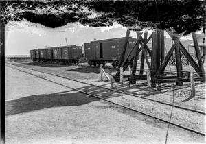 Primary view of object titled '[Train Cars at Depot]'.