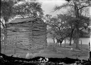 [Log Cabin and Cow on River Bank]