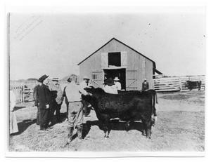 Primary view of object titled '[President Taft at Taft Ranch]'.
