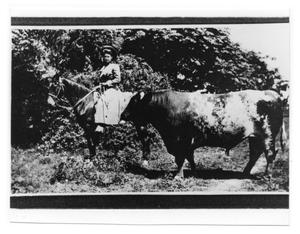 Primary view of object titled '[Women Riding Horse]'.