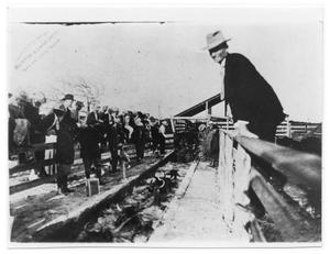 Primary view of object titled '[President Taft and Joseph F. Green at Cattle Dipping]'.