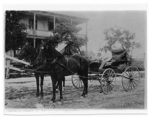Primary view of object titled '[Portrait of Man on Horse - Drawn Wagon]'.