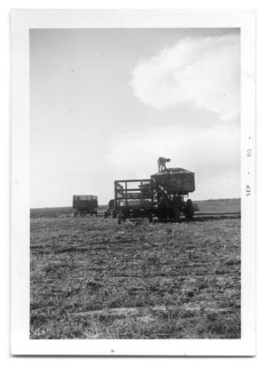 [Cotton Picking Equipment]