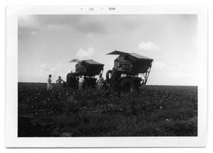 [Cotton Harvesting Equipment]