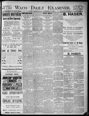 Primary view of object titled 'Waco Daily Examiner. (Waco, Tex.), Vol. 19, No. 11, Ed. 1, Sunday, November 29, 1885'.