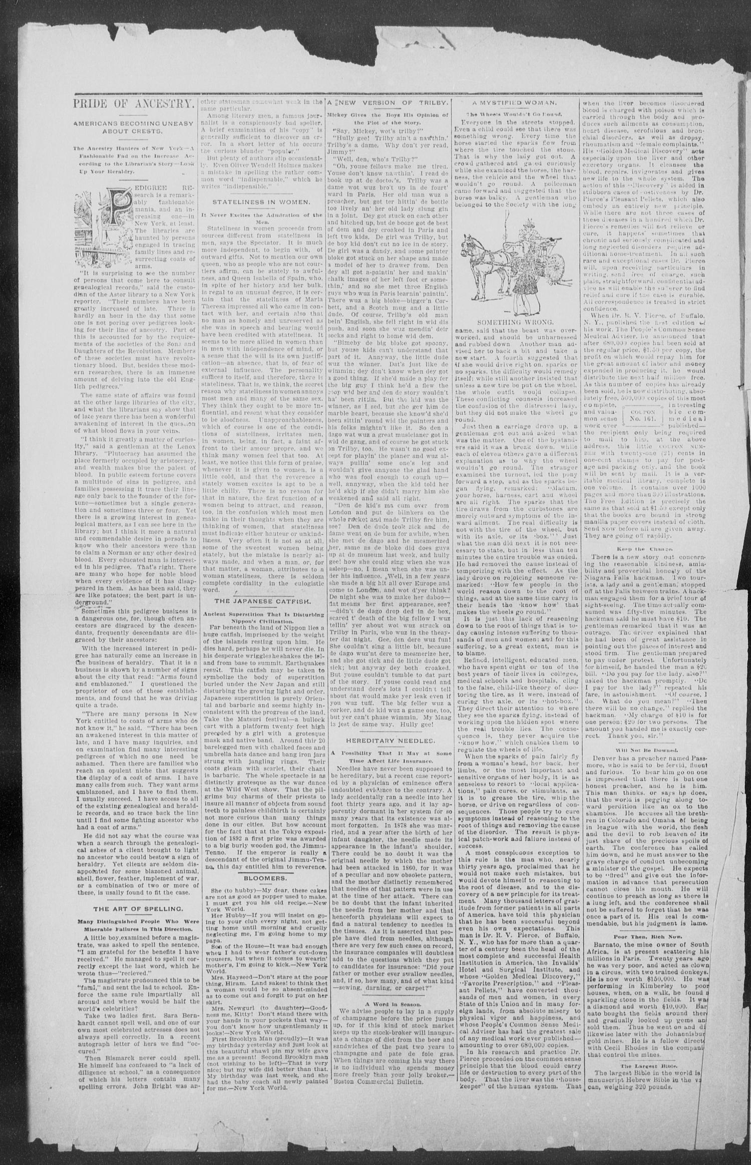 Shiner Gazette. (Shiner, Tex.), Vol. 3, No. 4, Ed. 1, Thursday, July 4, 1895                                                                                                      [Sequence #]: 2 of 8