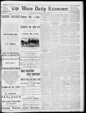 Primary view of object titled 'The Waco Daily Examiner. (Waco, Tex.), Vol. 15, No. 259, Ed. 1, Sunday, October 15, 1882'.