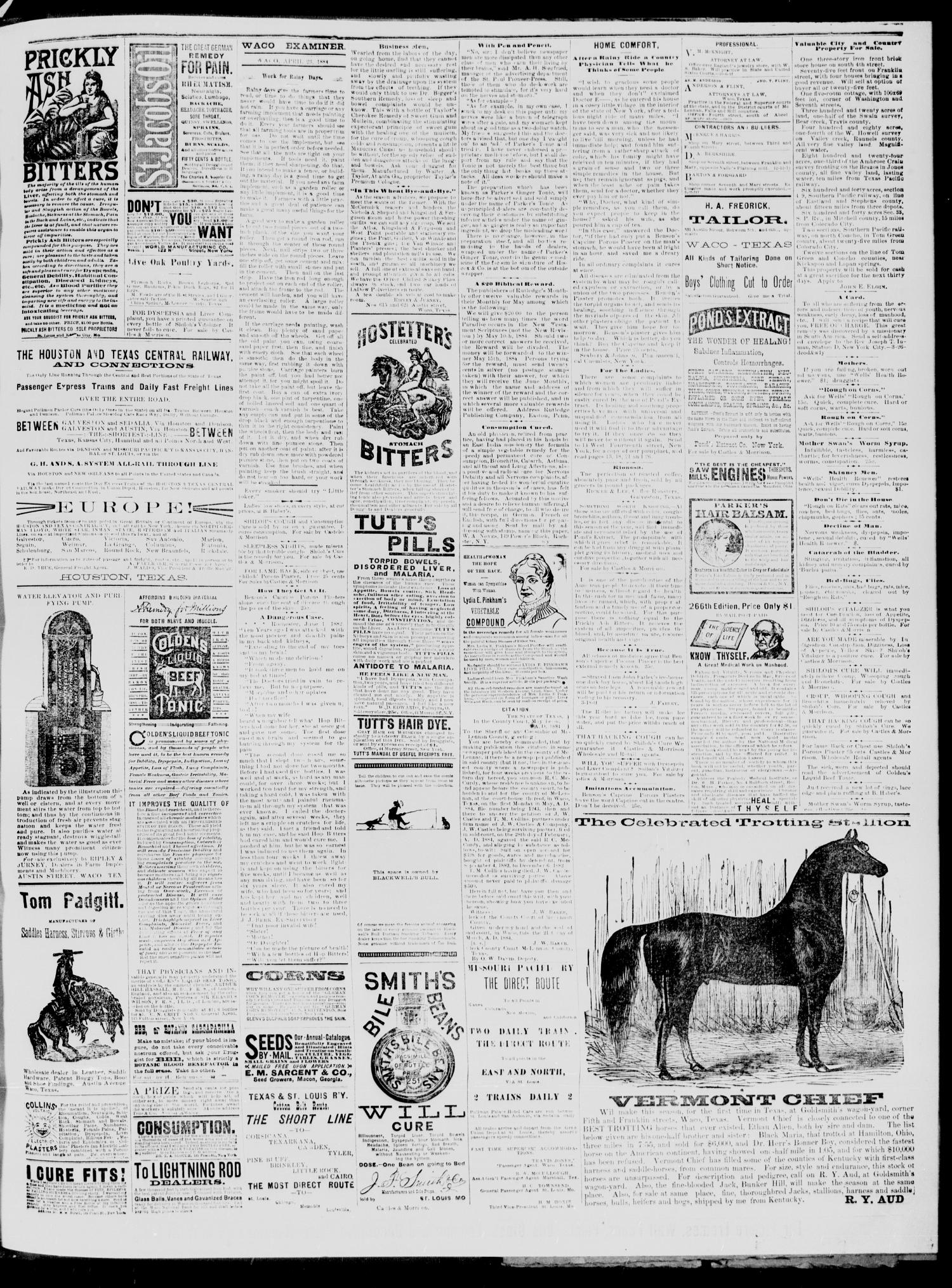 The Waco Daily Examiner. (Waco, Tex.), Vol. 17, No. 85, Ed. 1, Wednesday, April 23, 1884                                                                                                      [Sequence #]: 3 of 4
