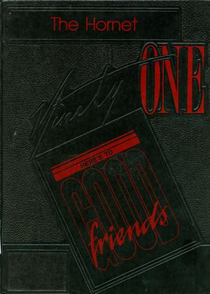 Primary view of object titled 'The Hornet, Yearbook of Aspermont Students, 1991'.