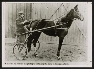 [Charlie M with Rider and Buggy]