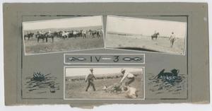 [D. F. Urschel Ranch Photos]