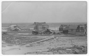Primary view of object titled 'After the hurricane, 4th Artillery officers line'.