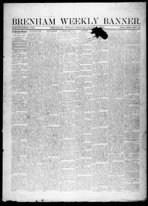 Primary view of object titled 'Brenham Weekly Banner. (Brenham, Tex.), Vol. 13, No. 23, Ed. 1, Friday, June 7, 1878'.
