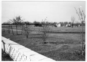 Primary view of object titled '[Memorial Park in Texas City]'.