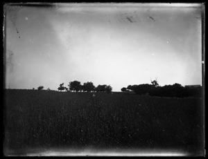 Primary view of object titled '[Boy in Open Field]'.