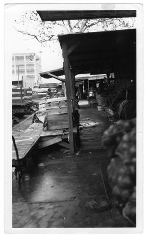Primary view of object titled '[Scene at Dallas Farmer's Market]'.