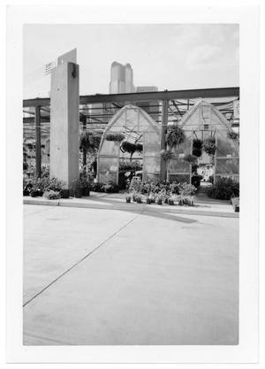 Primary view of object titled '[Entrance to Greenhouse at Dallas Farmer's Market]'.